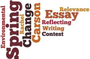 environment essay contest Third annual sustainability essay contest the north carolina bar association's environment, energy & natural resources section is pleased to announce a.